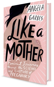 Book cover image: Like a Mother
