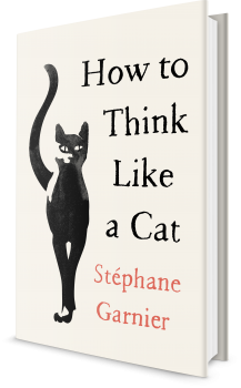 Book cover image: How to Think Like a Cat